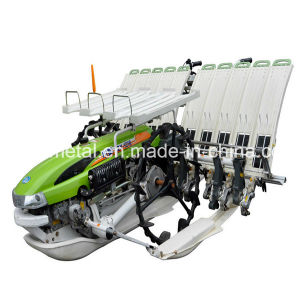 6 Row Agricultural Rice Transplanter (2TS-630)