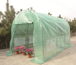 Vegetable Flower Plant PVC PE Outdoor Green House on Sale pictures & photos