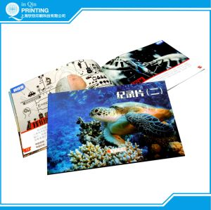 A4 Full Color Catalogue Printing pictures & photos