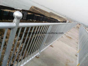 Powder Coated Steel Fencing High Decorative, Ornaments, Seaside Galvanized Steel pictures & photos