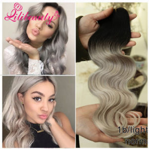 Hair Dye Without Chemicals Malaysian Body Wave Ombre Hair Weave pictures & photos