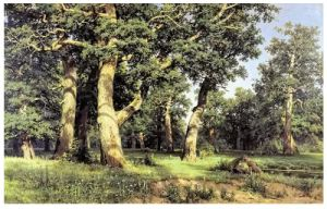 Famous Artists Oil Painting, Masterpiece Oil Painting, Eichen, Abend (1887years) -Ivan Shishkin pictures & photos