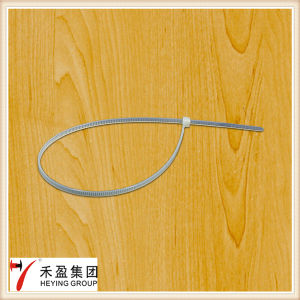 Plastic Nylon 66 Cable Tie Self-Locking pictures & photos