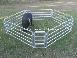 Heavy Duty Used Livestock Panels / Cattle Panels/ Sheep Panels pictures & photos