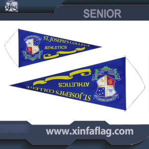 Portable Triangle Pennants/Bannerettes/String Flag pictures & photos