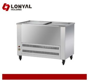 Stainless Steel Hotel Freezer, Beverage Freezer (LY-GW220)