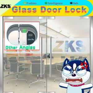 Zks-Gw1 OEM Fingerprint Remote Control Glass Door Lock