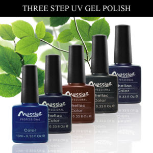 Long Lasting UV /LED Pure Gel Colour UV Gel Polish 10ml Nail Art