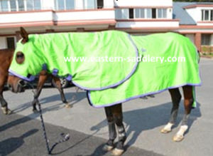 Lime Cotton Horse Show Set Rug, Hood & Tailbag Combo Purple Trim (NEW-25) pictures & photos