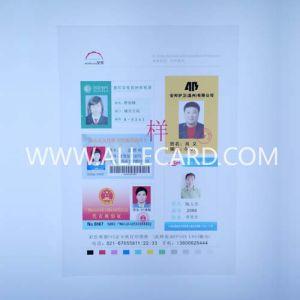 Rigid PVC White Card A4 Sheet pictures & photos
