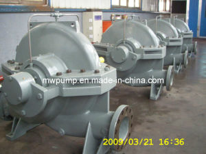 Stainless Steel Pump pictures & photos