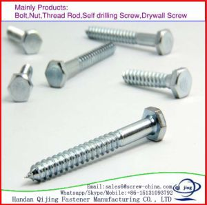 Wood Screws /Hex Washer Head Self Tapping Screw pictures & photos
