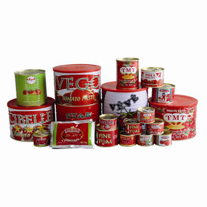 Tmt Canned Tomato Paste of All Size 70 G, 210 G, 400 G, 800 G, 850 G, 1 Kg, 2, 2 Kg pictures & photos