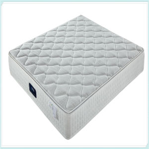 China Supply Home Spring Mattress C23t pictures & photos