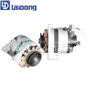 Laidong Diesel Engine Parts Diesel Engine pictures & photos