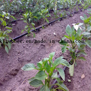 Agriculture PE Plastic Drip Irrigation Pipe pictures & photos