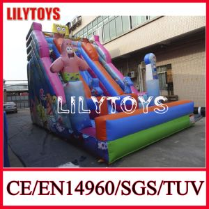 New Inflatable Dry Slide From Lilytoys pictures & photos