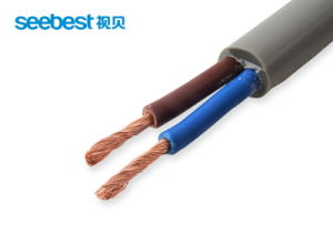 Insulated Copper Wire Suppliers, 12 Guage Wire Lacquered Copper Wire pictures & photos