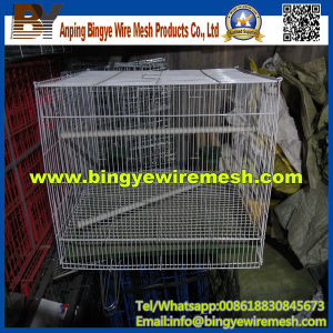 PVC Chicken Pigeon Rabbit Cage From Bingye pictures & photos