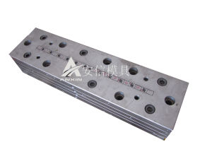Frame Extrusion Mold (ANXIN-015)