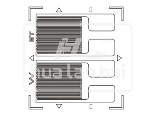 Fb Strain Gauge (FB Style) pictures & photos