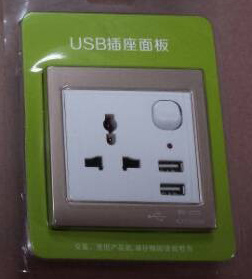 Universal Dual USB Wall Socket pictures & photos