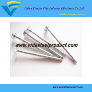Big Head Roofing Steel Nails pictures & photos