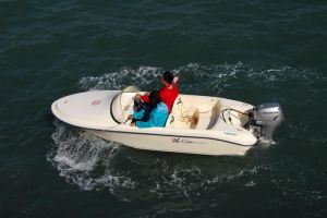 Dafman Sport Boat 120 pictures & photos