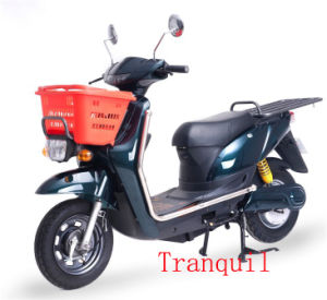 1000W Electric Scooter (AG-FDM13)