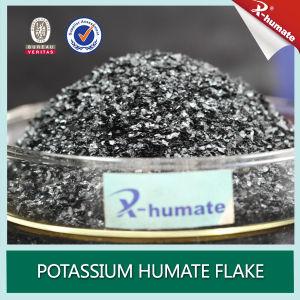 Super Sodium Humate (nut mordant) pictures & photos