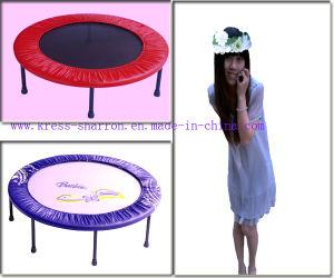 Red&Purple Mini Trampoline