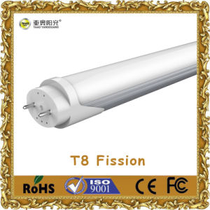 LED T8 Fission Tube Light
