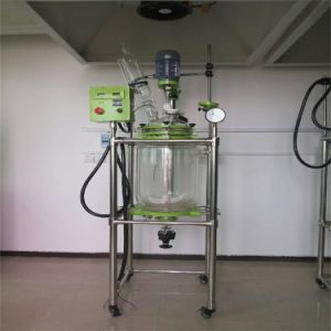 Jacketed Glass Reactor (EX-HEB-10L) pictures & photos