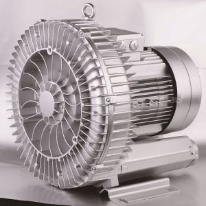 Side Channel Blower for Pheumatic Conveying (210H06) pictures & photos