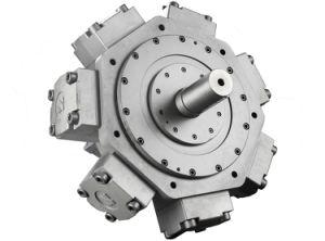 Radial Piston Hydraulic Motor Intermot/Staff Type/ Jmdg-6 Series pictures & photos