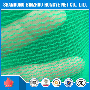 Pet Green Construction Safety Net, Building Safety Net/Scaffold Construction Safety Net pictures & photos