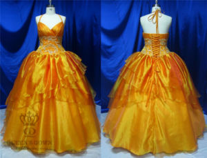 High Quality Organza Evening Dress Prom Dresses pictures & photos
