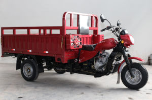Hot Selling Three Wheeled Cargo Motorbike pictures & photos