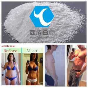 Muscle Growth Steroids 7-Keto-Dehydroepiandrosterone 99% CAS566-19-8 pictures & photos