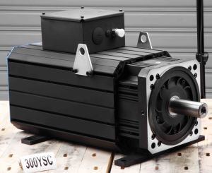 AC Permanent Magnet Servo Motor (300ysc15f 315nm 1500rpm) pictures & photos