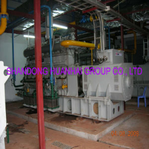 100kw 200kw 400kw 800kw 1MW 2MW Biogas Power Station pictures & photos