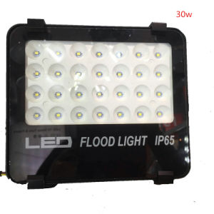 High Quality Ce RoHS Approval Aluminum Housing 10W PIR LED Flood Light with Motion Sensor pictures & photos