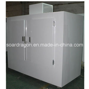 Cold Wall Bagged Ice Freezer Merchandiser with Slide on Compressor pictures & photos