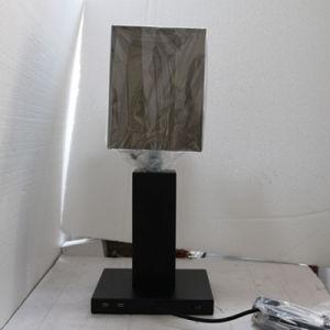 Hotel Decorative Matt Black Bedside Table Lamp with 2PCS USB pictures & photos