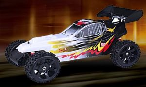 Shenzhen Cn28.5cc 1 5 Scale Electric RC Car pictures & photos