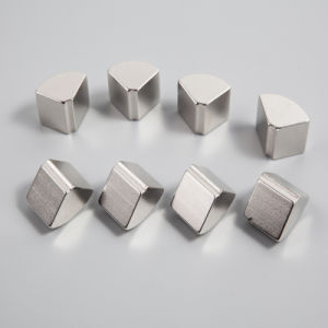 Special Permanent Neodymium Magnets pictures & photos