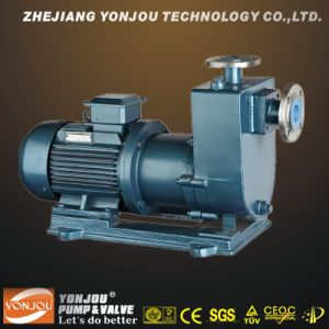 Zcq Self-Priming Magnetic Pump pictures & photos