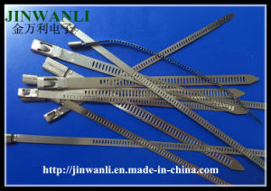 Ladder Single Barb Lock Type Stainess Steel Cable Tie pictures & photos