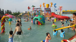 Kid′s Water House Playgound Structures with Water Slide, Animal Shaped, Water Spray pictures & photos