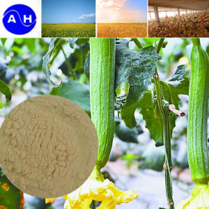 Enzymolysis Amino Acids 80% Free Salt Organic Foliar Fertilizer 14-0-0 pictures & photos